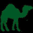 mena icon camel