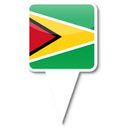 Guyana-icon.png