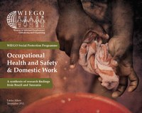 WIEGO Social Protection Programme Occupational Health and Safety & Domestic Work: A synthesis of research findings from Brazil and Tanzania