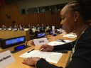 CSW60: Domestic work is the work that makes all other work possible, says Allison Julien
