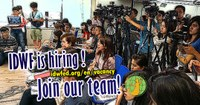 Global: IDWF Media Officer (CLOSED)