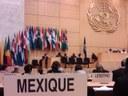 Convenio sobre el Trabajo Decente para las Trabajadoras y Trabajadores Domésticos. Aprobado por la OIT.