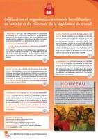 Global: Célébration et organisation en vue de la ratification de la C189 et de réformes de la législation du travail