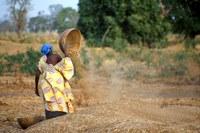 Sénégal: Les travailleuses domestiques invitent l'Etat à ratifier la Convetion 189 de l'OIT